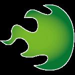 logo_flame
